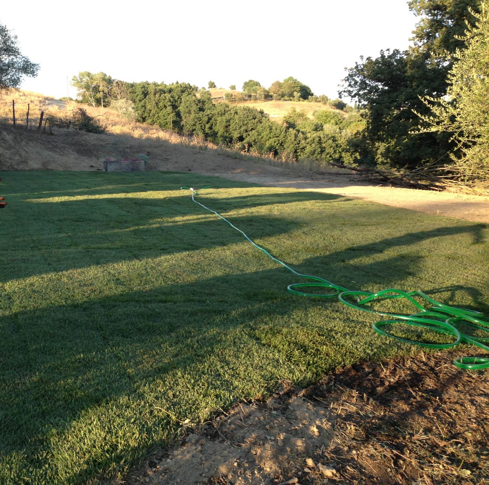 Prato a rotoli prima e dopo rabazzi pianterabazzi piante for Prato erboso a rotoli